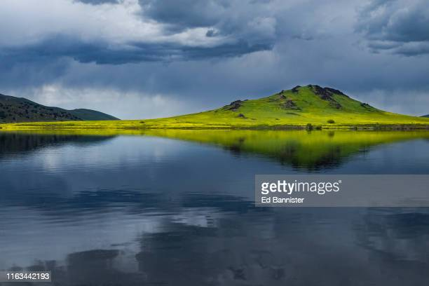 mustard bloom in reflection of stormy lake and sky - springville california stock pictures, royalty-free photos & images