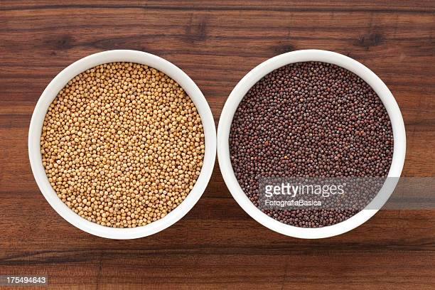 mustard grains - mustard stock pictures, royalty-free photos & images