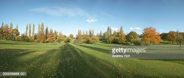 muswell hill golf course fairway in autumn - golf stock pictures, royalty-free photos & images