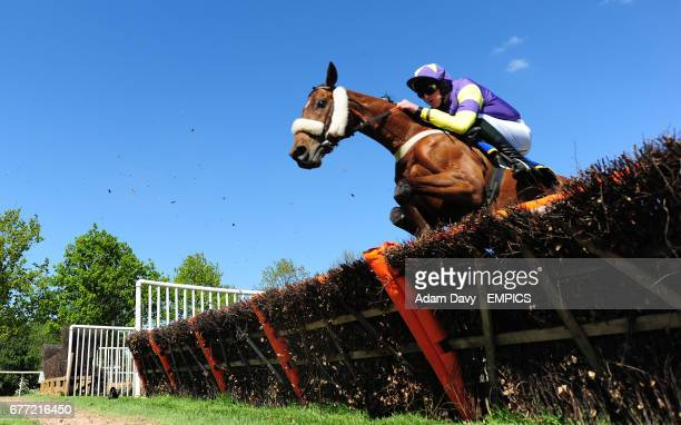 Mut'Ab ridden by Alan Creighton on the way to winning the Gresham's Prep School Racing to School Selling Hurdle Race