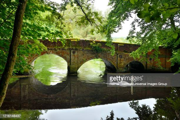mute swam swimming under a red brick arched bridge over avon river at beech walk salterton salisbury england - サリスベリー ストックフォトと画像