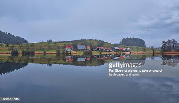 muttelsee - natur stock pictures, royalty-free photos & images