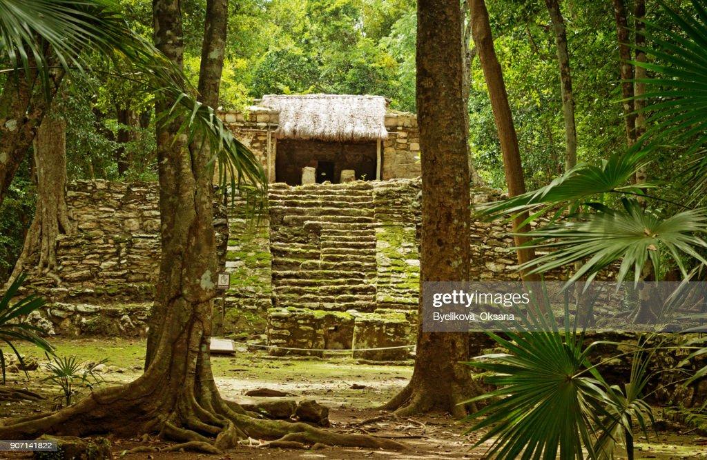 Muyil ancient Maya sites, Yucatan Peninsula in Mexico : Stock Photo