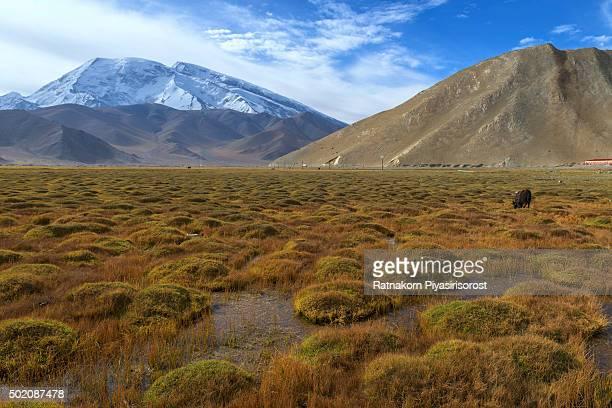 Muztagh Ata, as viewed from the Karakoram Highway