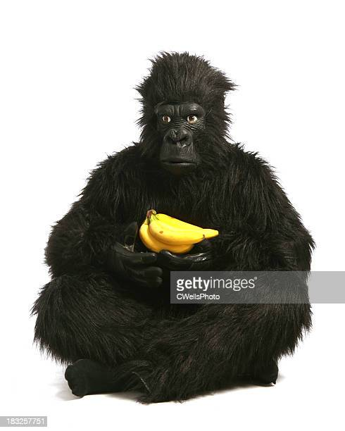 my bananas - monkey suit stock pictures, royalty-free photos & images