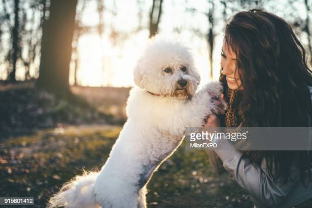 Peachy Poodle Hairstyles Stock Pictures Royalty Free Photos Images Natural Hairstyles Runnerswayorg