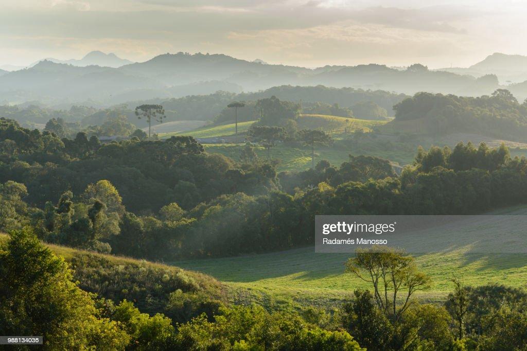My countryside : Foto de stock