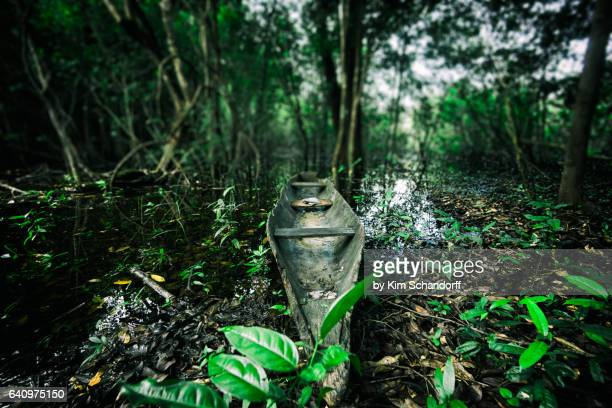 my old amazon canoe - peruvian amazon stock pictures, royalty-free photos & images