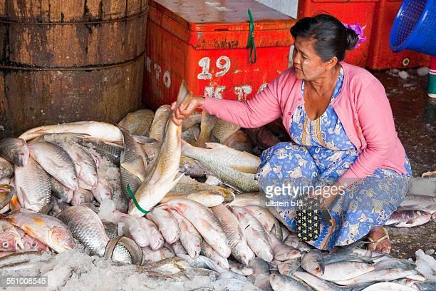 MMR Myanmar Burma Birma Yangoon Aufnahmedatum2013 Asien Reise Reiseziel Fischmarkt Kympyinthein Markt Markstand Verkaufer Verkaeuferin Markthalle...