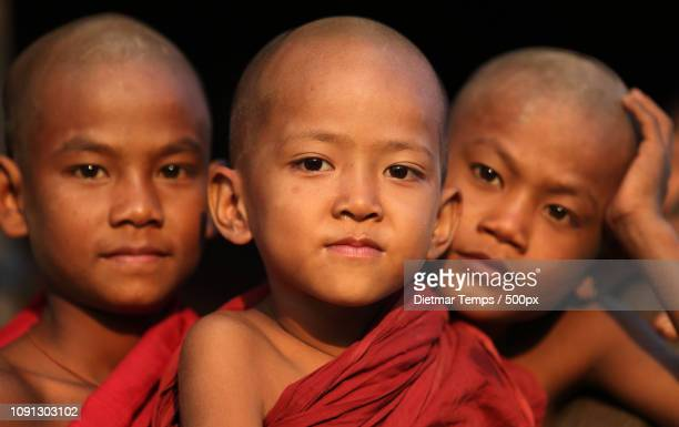 myanmar, monks and novices - dietmar temps stock photos and pictures