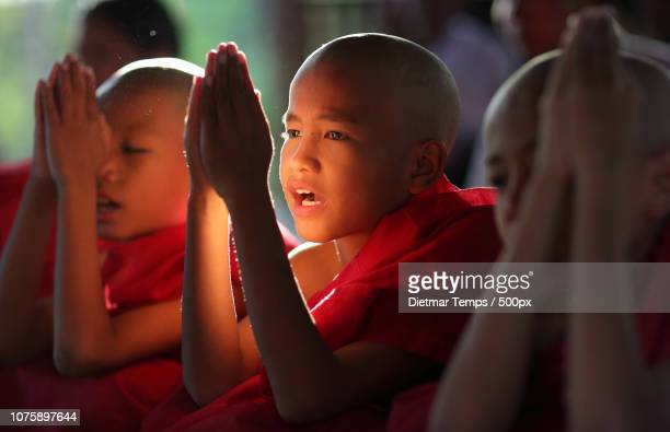 myanmar (burma), novice hood initiation in bagan - dietmar temps 個照片及圖片檔