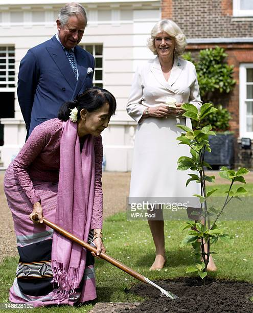 Myanmar opposition leader Aung San Suu Kyi finishes planting a Magnolia tree next to Prince Charles Prince of Wales and Camilla Duchess of Cornwall...