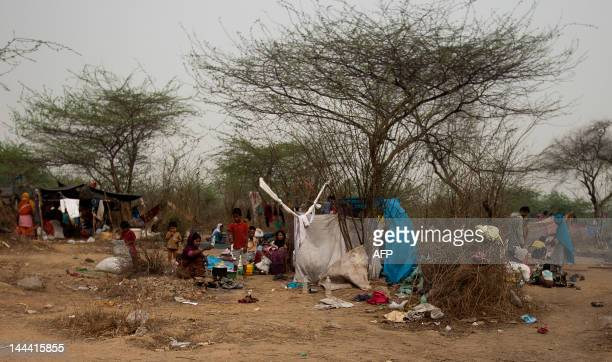 Myanmar refugees from the Rohingya community a predominantly Muslim sect in Myanmar take shelter under trees at a makeshift refugee camp in New Delhi...