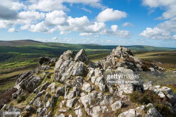 mynydd carningli, newport, pembrokeshire, wales - newport wales photos stock pictures, royalty-free photos & images