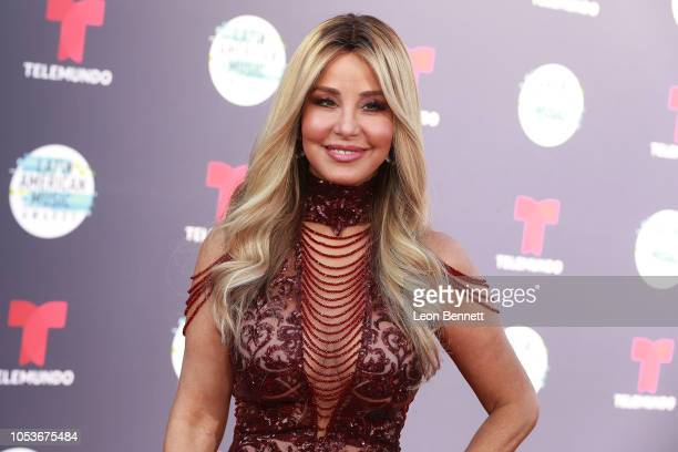 Myrka Dellanos attends the 2018 Latin American Music Awards Arrivals at Dolby Theatre on October 25 2018 in Hollywood California