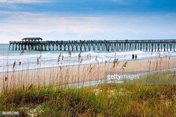 myrtle beach state park, south carolina - template_talk:grand_strand stock pictures, royalty-free photos & images