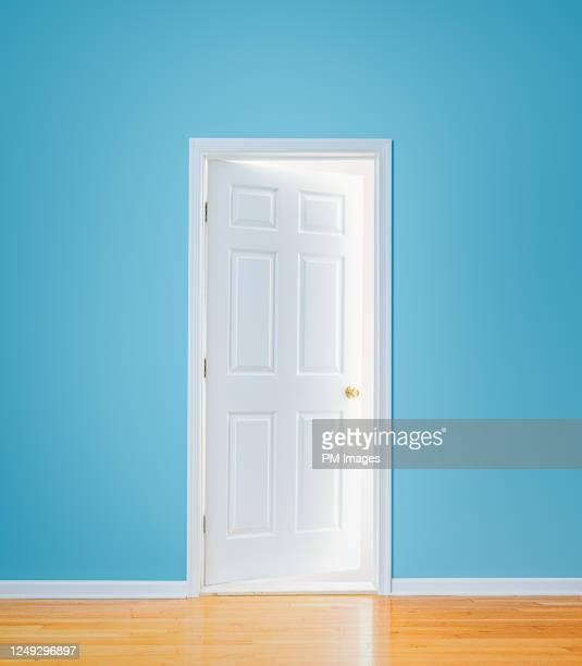 mysterious door - 戸口 ストックフォトと画像