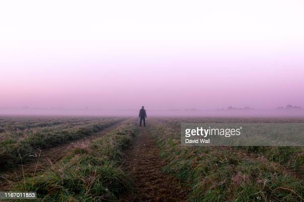 a mysterious lone figure standing in a field on a beautiful early misty morning. - morning stock pictures, royalty-free photos & images