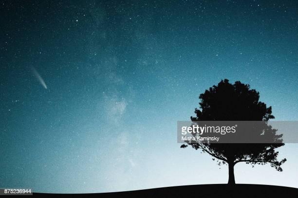 mysterious night sky - grande carro costellazione foto e immagini stock