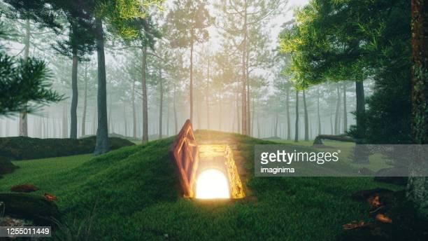 森の中の神秘的なオープンハッチドア - 日常から抜け出す ストックフォトと画像