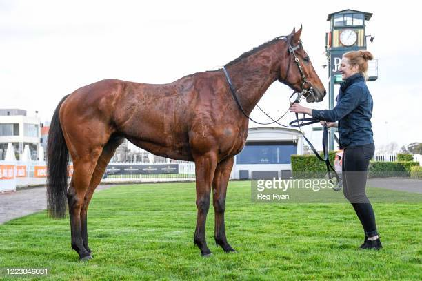 Mystery Shot after winning the Take It To The Neds Level Hcp , at Caulfield Racecourse on June 27, 2020 in Caulfield, Australia.