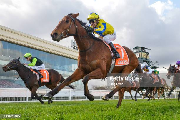 Mystery Shot ridden by Michael Rodd wins the Take It To The Neds Level Hcp at Caulfield Racecourse on June 27, 2020 in Caulfield, Australia.