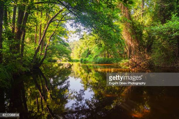 mystic river - riverbank stock photos and pictures