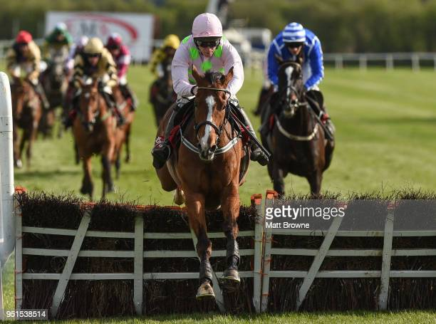 Naas Ireland 26 April 2018 Faugheen with David Mullins up jumps the last on their way to winning the Ladbrokes Champion Stayers Hurdle at Punchestown...