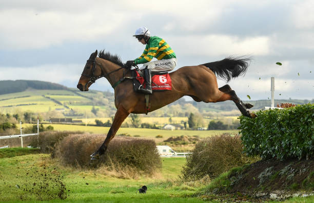 Image result for mark walsh jockey