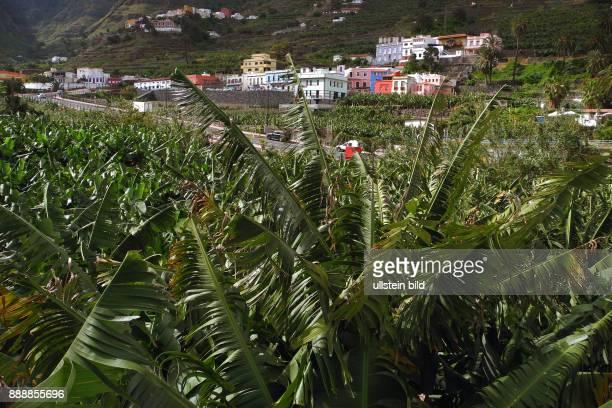 Nach Ankunft im Faehrhafen La Gomera San Sebastian Fahrt ueber kurvenreiche Bergstrassen zum neuen Mirador de Abrante Der Ort Agulo an einer...