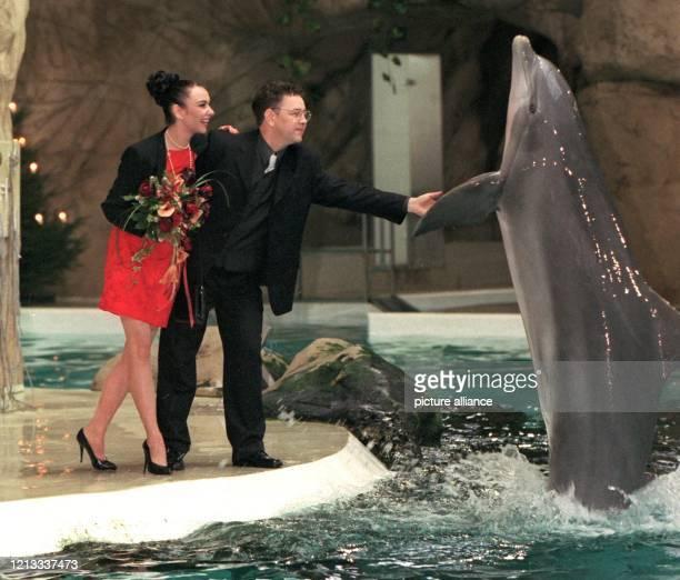 Nach der Trauung von Petra Walsh und Wolfgang Buschmann im Delphinarium des Duisburger Zoos am 5.12.1997 steigt Tümmlerdame Pepina aus dem Wasser, um...