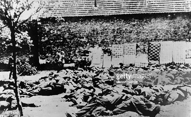 Nach der Vernichtung der Bergarbeiter-Siedlung Lidice im Gefolge der Ermordung des Stellvertretenden Reichsprotektors Reinhard Heydrich: die Leichen...