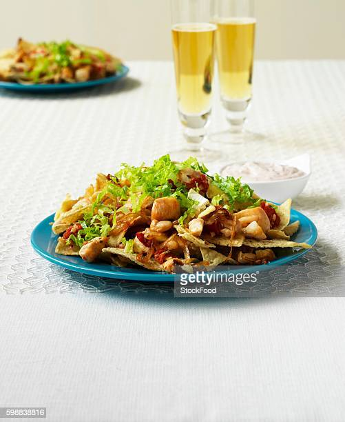 Nachos with chicken and frisee (Mexico)