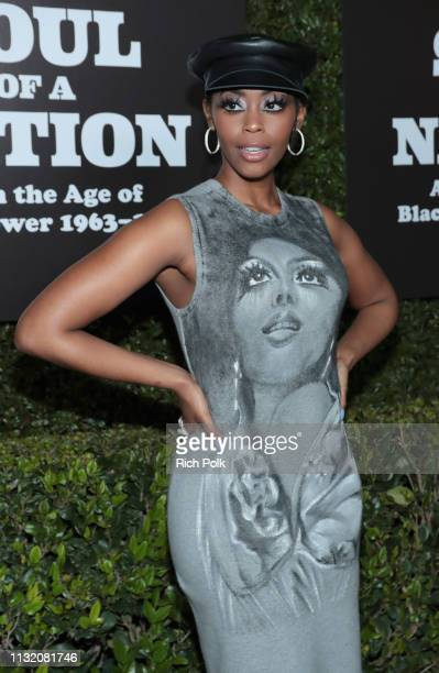 Nafessa Williams attends The Broad Museum celebration for the opening of Soul Of A Nation Art in the Age of Black Power 19631983 Art Exhibition at...