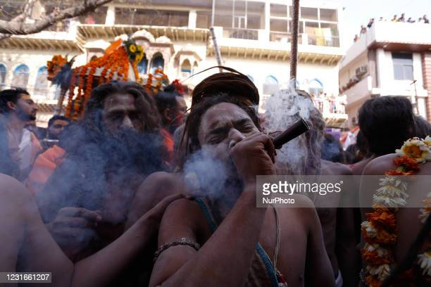 Naga Sadhu or holy man of Juna Akhara smokes weed as others move towards ganges River to take a holy dip on the occasion of first royal bath of...