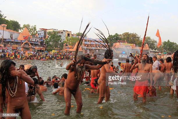 Naga Sadhu or holy men take a holy bath in the Shipra river during last Sahi bath at Simhasth Kumbha in Ujjain