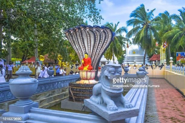 nagadeepa buddhist temple, nainativu island, jaffna. - imagebook stock pictures, royalty-free photos & images