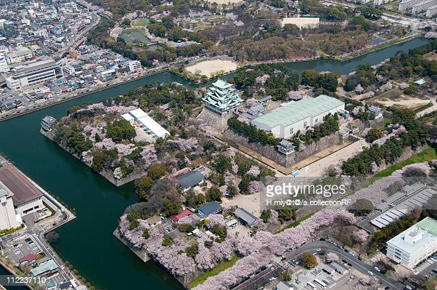 Nagoya Castle in Spring, Aerial view