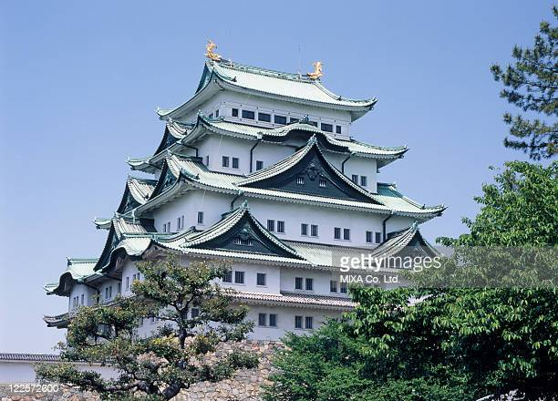 nagoya castle, nagoya, aichi, japan - aichi prefecture stock pictures, royalty-free photos & images