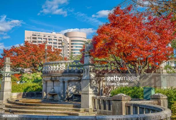 Nagoya University School of Medicine.