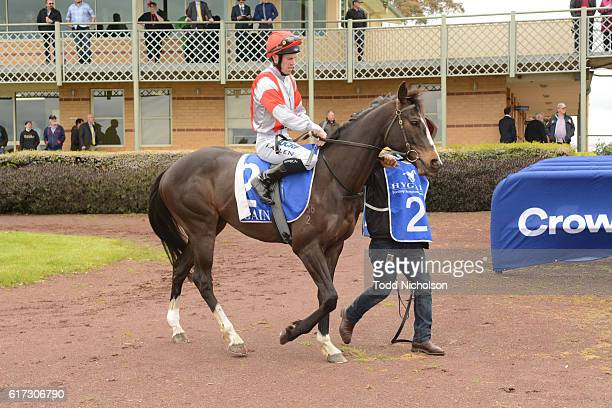 Nahanni ridden by John Allen goes out for Patrick of Coonawarra Maiden Plate at Hamilton Racecourse on October 23 2016 in Hamilton Australia