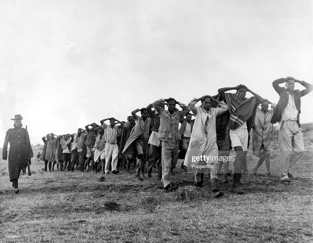 Nairobi, Kenya, 1952. A photograph showing a round up of Mau Mau suspects being led away for questioning by police with their hands on their heads after being captured in a raid in the Great Rift Valley in Kenya. : News Photo