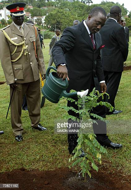 Democratic Republic of Congo President Joseph Kabila waters a tree 14 December 2006 during a planting ceremony at the UN complex in Nairobi as part...