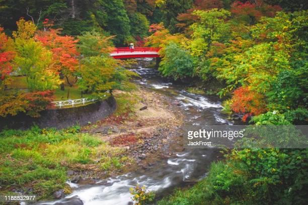 nakano momiji yama - hd format stock pictures, royalty-free photos & images