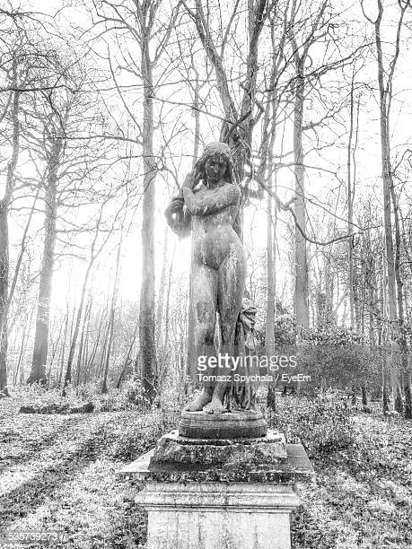 Naked Female Statue Against Bare Trees In Forest