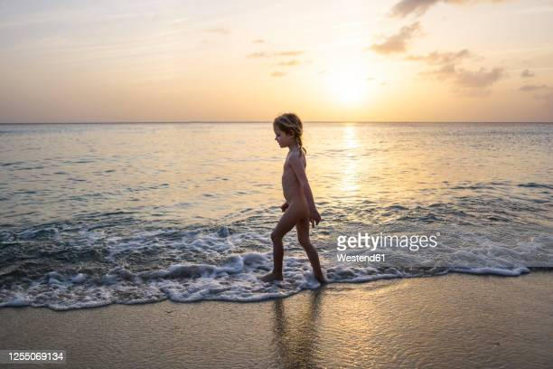 naked little girl strolling on the beach at sunset, willemstad, curacao - bambine femmine nudi foto e immagini stock