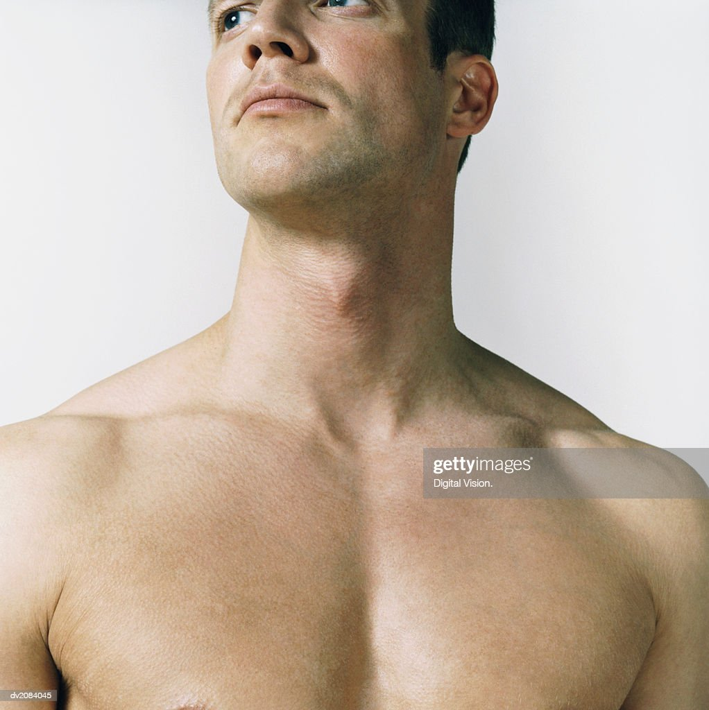 Naked Man's Chest : Stock Photo