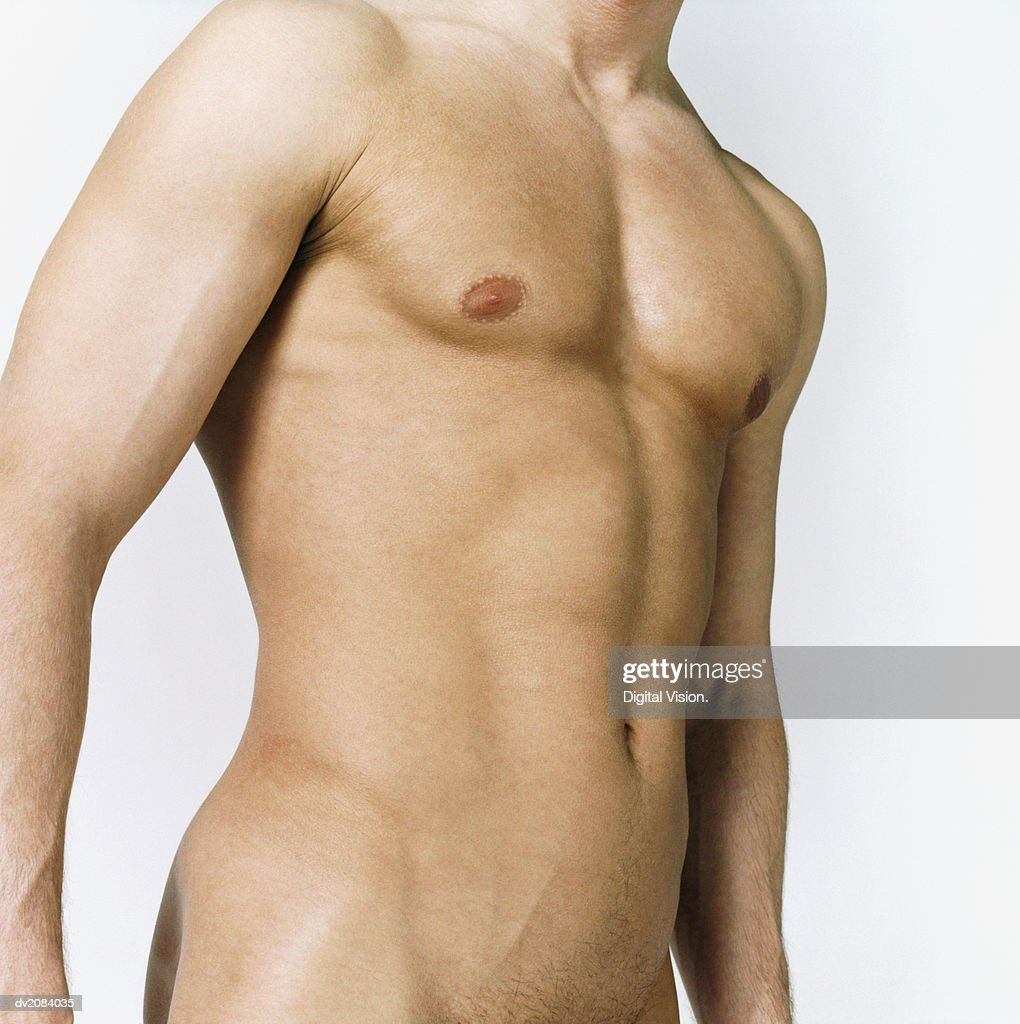 Naked Man's Torso : Stock Photo