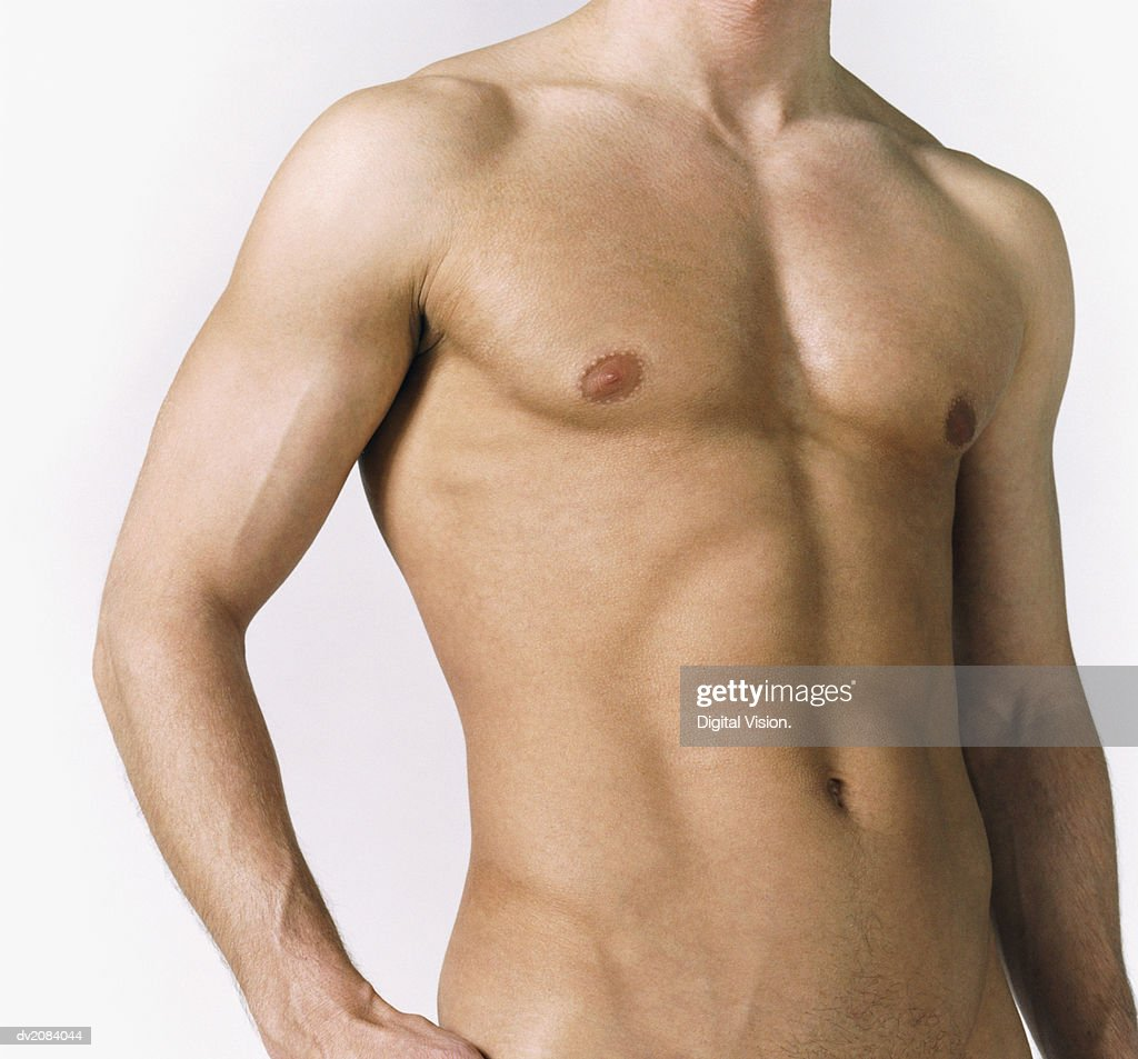 Naked Man's Torso : Stock Photo