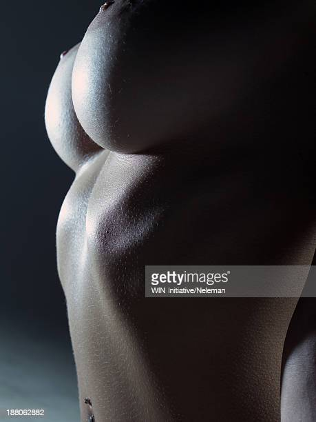 Naked torso of a beautiful woman